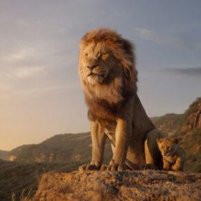 Stemmer danske løvernes 2021 konge Med dansk